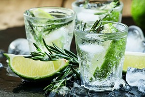 Buy Gin Tasting Experience with Canape Workshop for Two at The Smart School of Cookery