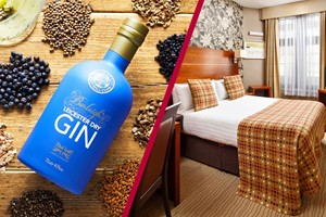 Buy Two Night Stay at Mercure Leicester The Grand Hotel with a Gin Masterclass at 45 Gin School