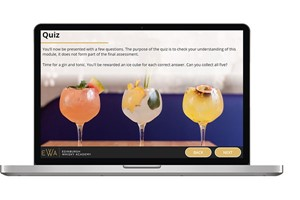 Buy Online Gin School for One