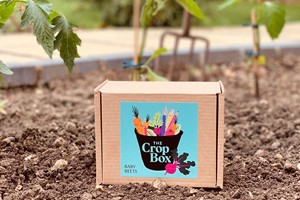 12 Month Subscription To Grow Your Own Vegetables By The Crop Box For One Adult Or Child