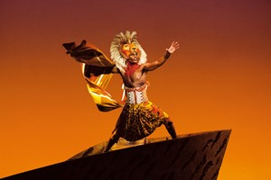 Theatre Tickets To The Lion King For Two