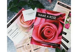 Personalised Name A Rose Gift