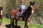 Pony Day Experience at Scraptoft Stables
